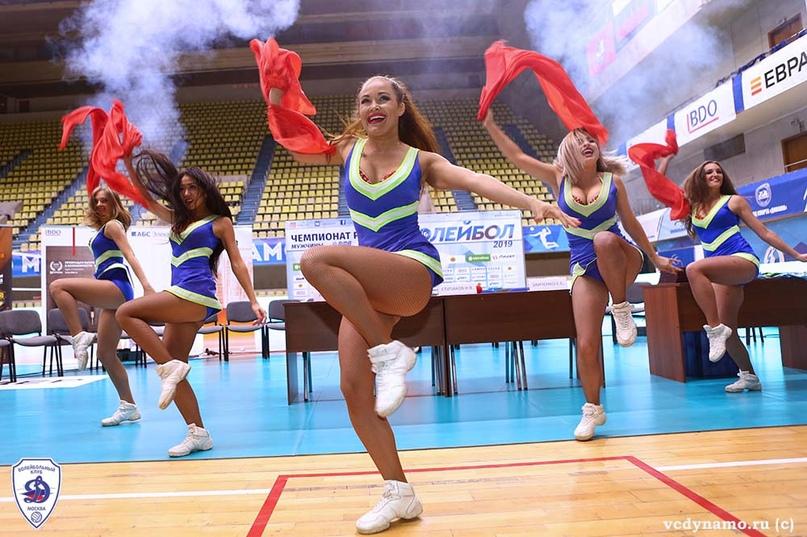 Волейбольный клуб «Динамо» готов к старту сезона