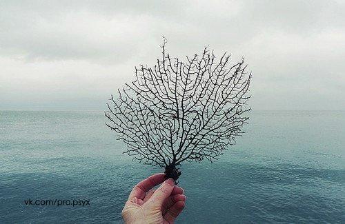 Гармония мысли • Вы с неизбежностью притягиваете к себе людей и обстоятельства, которые гармонируют с преобладающими у вас мыслями. • Ваш потрясающий мозг может поднять вас из нищеты до богатства, превратить вас из одиночки во всеобщего любимца, вывести из депрессии, сделав счастливым и радостным, – если вы правильно воспользуетесь им. • Все, что вы делаете, чтобы повысить самооценку других людей, одновременно повышает вашу собственную самооценку. • Самосовершенствование является ключевым…