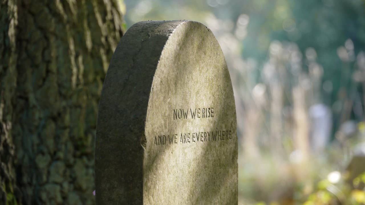 Ник Дрейк (Nick Drake): биография