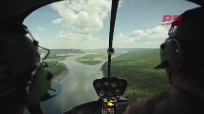 Всё что нужно знать о вывозе российского леса в Китай