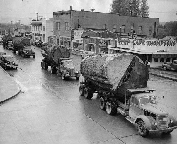 Грузовики с бревнами в Норт–Бенд, США, 1943 год.