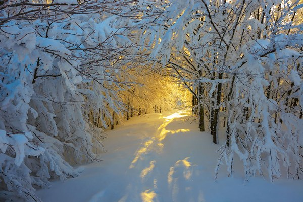 Зимний рассвет в Национальном парке Кампинья, Италия