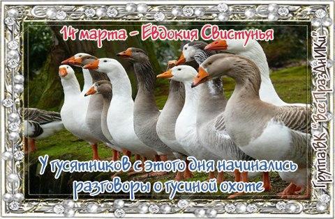 https://pp.userapi.com/c7003/v7003501/45241/zsfL7MKjy3g.jpg