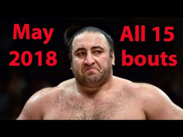 ტოჩინოშინის 15-ვე ბრძოლა მაისის ბაშოზე   Tochinoshin all 15 bouts on