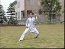 Chen Taichi 56 Competition Routine 陈式太极拳竞赛套路56