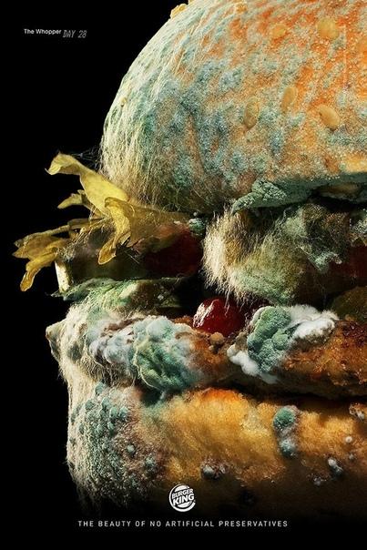 Чтобы угодить cвоим клиентам, Burger ing решил больше не использовать искусственные консерванты и красители в своей продукции и показывает, как будет выглядеть их бургер через 34 дня. «Мы в