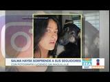 Salma Hayek sube foto sin maquillaje y con su perrito Noticias con Paco Zea