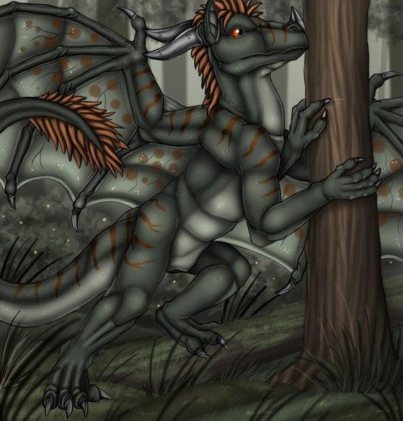 Фурри драконы порно iiff 17 фотография