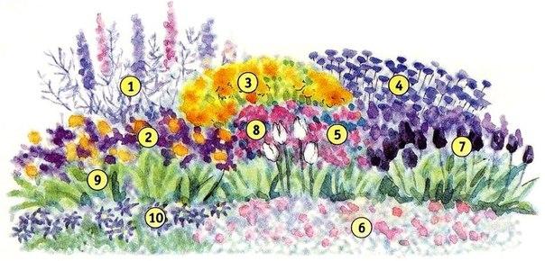 Несколько схем цветников