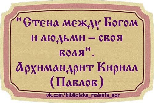 http://cs408519.vk.me/v408519794/4be2/xS36yCR8qvs.jpg