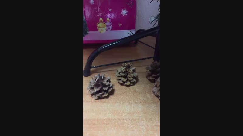 Live: Искусственные елки Саратов Энгельс