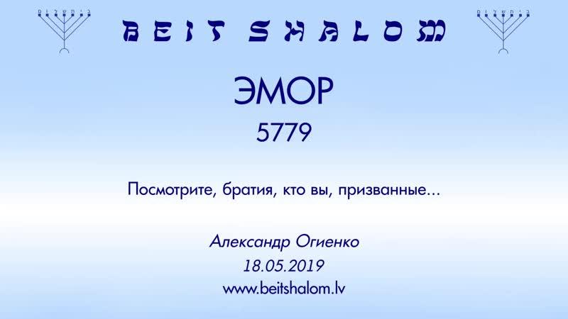 «ЭМОР» 5779 «ПОСМОТРИТЕ БРАТЬЯ, КТО ВЫ, ПРИЗВАННЫЕ...» А.Огиенко (18.05.2019)