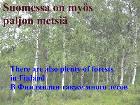 Это Суоми. This is Suomi (Финляндия Finland).
