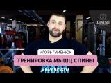 #DavinciGym Гуменюк Игорь.Тренировка мышц спины.