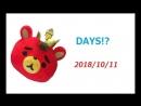 11.10.2018 Тохошинки на радио в Хиросиме (cr.: t_yukichi)