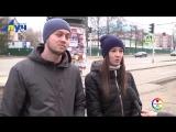 Жителей Альметьевска спросили как бороться с бездомными собаками