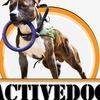 Activedog -Зоотовары- зоомагазин -Кинологпрофи-
