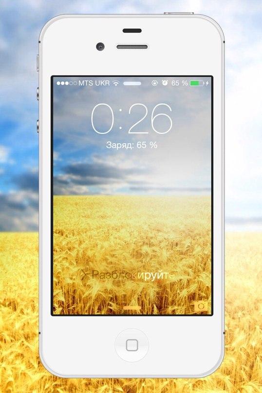 Обои поле пшеницы 2