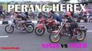 MANA YANG MENANG ? Begini PERANG HEREX Ninja vs Tiger | Drag Bike