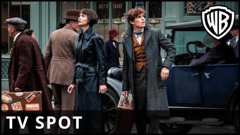 Fantastic Beasts: The Crimes of Grindelwald - 'View' TV Spot - Warner Bros. UK