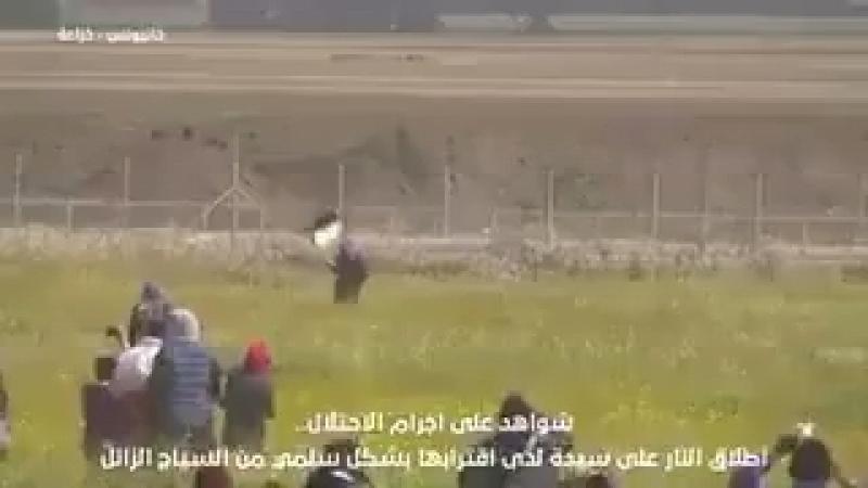Gaza une militante palestinienne tuée par un sniper sioniste