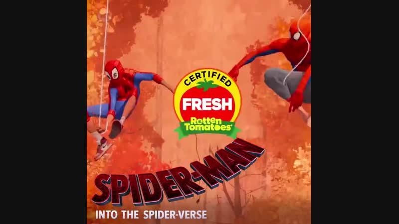 Фильм Человек-паук Через вселенные 🕷 уже получил сертификат Tomatometer