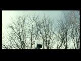 Трейлер / Путешествие с домашними животными / Вера Сторожева, 2007 (драма, мелодрама)