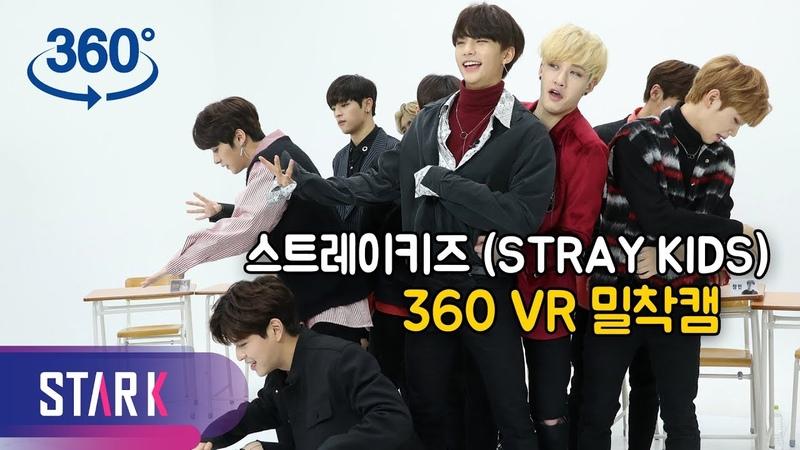 [IDOL 360] ※심멎 주의※ 슼둥이들이 다가옵니다…스트레이키즈 밀착캠 (Stray Kids 360 vr cam)
