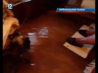В Омске затопило дом участника передачи Играй, гармонь! на Первом канале