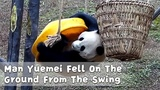 Man Yuemei Fell On The Ground From The Swing iPanda