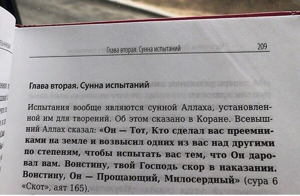 Фото №456254419 со страницы Аиды Салеевой