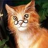 Микро - уроки от ученого Интернет-кота Барсика