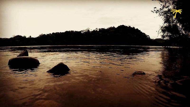 Sons da Natureza - Água Corrente do Rio