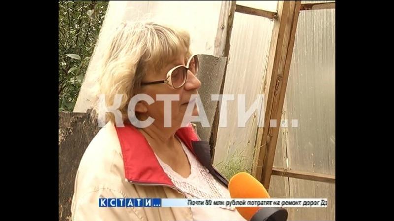 Пирамиду здоровья на своем участке построила жительница Городецкого района