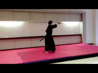 Budo Lecture and Mini Demonstrations at Chula 15/11/2013 - Tenshin Shoden Katori Shinto Ryu