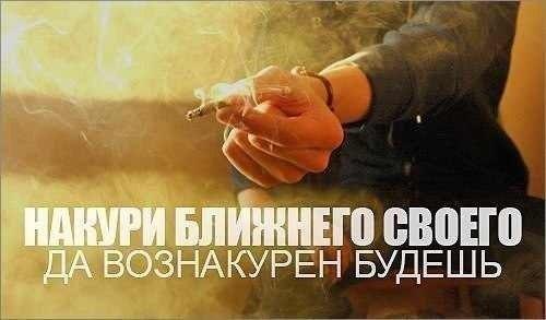 http://cs407817.vk.me/v407817931/7e8d/vTy7qeWz5ss.jpg