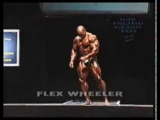 Flex Wheeler Grand Prix British 1999