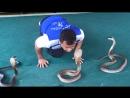 Snake 🐍 Тай 😳