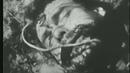 Евгений Юфит.Весна.1987.Некрореализм и Вечная память.