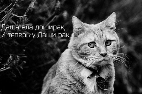 Kirill Litovinskiy | Москва