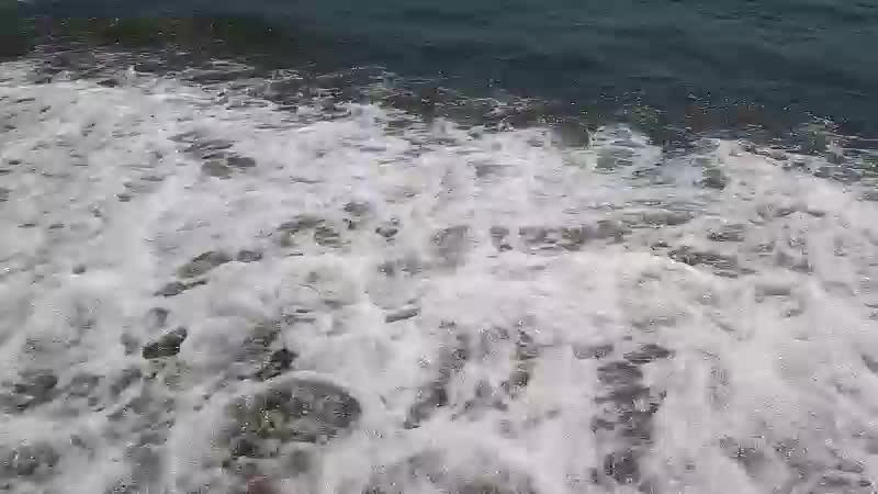 Веселовская бухта