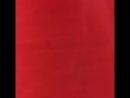 Французское кружево красного цвета с цветочным рисунком, фестон одинаковый с двух сторон. ⭐️ширина: 90см ⭐️состав: вискоза 91%,
