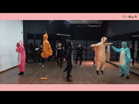 핫샷(HOTSHOT) - 니가 미워 Dance Practice (🐉🦘🐿🐢🐧 Ver.)