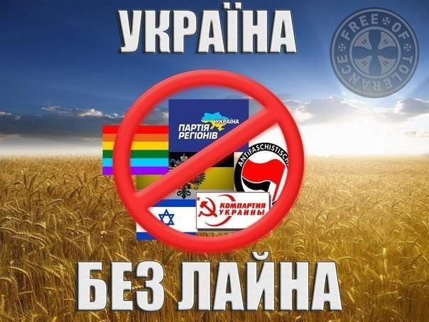 Оппозиционные кандидаты в проблемных округах требуют перевыборов всей Рады: Янукович взял курс на узурпацию власти - Цензор.НЕТ 1766