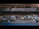 Стеновые панели из коробок от сока Сделано из вторсырья