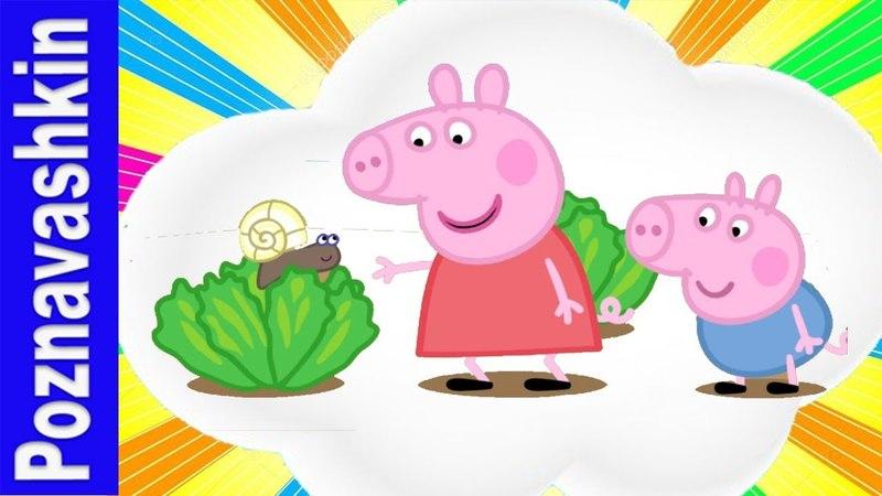Свинка Пеппа на русском Крошки букашки Весеннее время с Пеппа Мультики