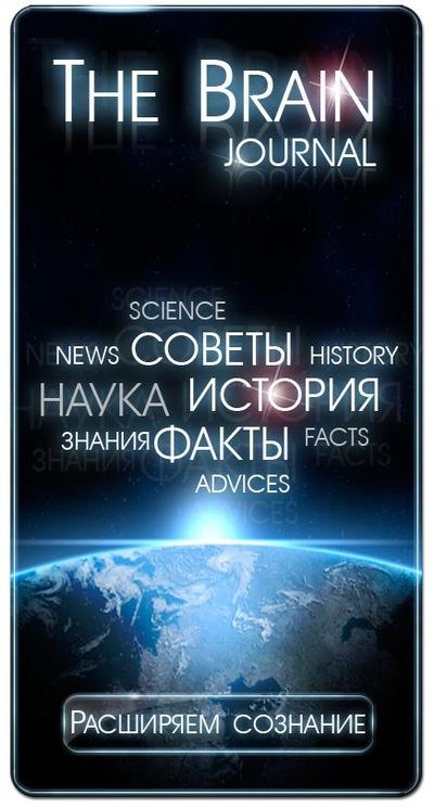 switch on your brain книга на русском