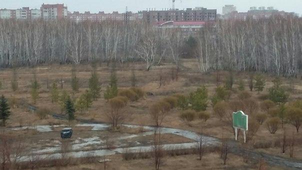 Новорожденного ребенка, чей труп был найден в Омске, никто не убивал