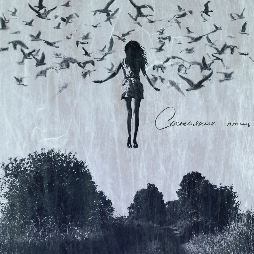 состояние птиц - Self-titled(2012)