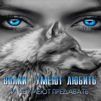 Анкета Алексей Цыганок